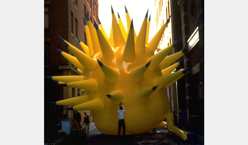 Yellow Urchin